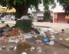 Garis cruzam os braços e problemas passados parece presentes. Lixo volta acumular em Óbidos.