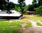 Lindo sítio na estrada de Balbina KM 50 na comunidade São Miguel Interessados entrar em contato pelo telefone (92) 9.9457-5550 Jean ou (92) 99278-8232 Marcilene.
