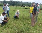 Pecuária Sustentável na Prática inicia sua implementação em Oriximiná