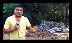P.Obidense - Lixo campina