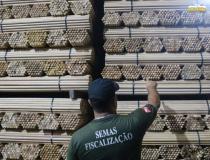 Semas apreende mais de 1 milhão de cabos de vassoura explorados irregularmente   Porta Obidense