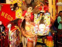 Blocos apresentam seus stands com o tema do Carnapauxis 2020 na Casa de Cultural   Portal Obidense