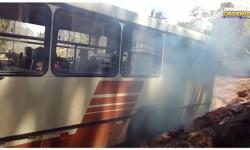 Veja vídeo de situação decadente do Ramal Óbidos Cruzeirão   Portal Obidense