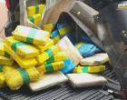 Operação da PM apreende 171,65 Kg de drogas no Baixo Amazonas | Portal Obidense