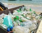 Na Semana do Meio Ambiente, projeto Limpeza dos Mares volta à ativa com o patrocínio do Fort Atacadista