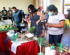 Escola Irmã Firmina é a campeã do 1° concurso Ambiental de Óbidos | Portal Obidense