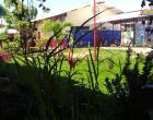 Escola Maurício Hamoy está recebendo atividades remotas dos alunos | Portal Obidense
