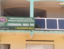 Presidente do SindPesca de Óbidos responde ao Deputado Federal Éder Mauro   Portal Obidense