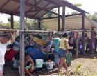 Castanheiros clamam por liberação da Área dos Campos Gerais | Portal Obidense