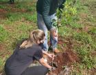Projeto ArboreSer realiza plantio de 80 mudas neste domingo (24)