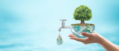 Como captar e reutilizar a água da chuva