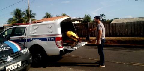 Em Oriximiná, escola denuncia abuso sexual em criança de 9 anos. Após investigação feita pela Polícia Civil o acusado é preso
