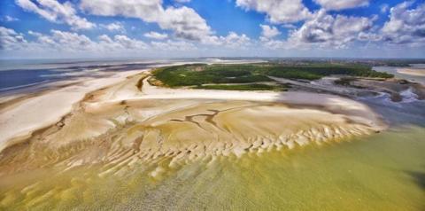 Meio ambiente - força-tarefa do Estado atua para proteger litoral paraense | Portal Obidense