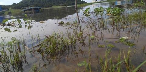 Defesa Civil de Óbidos, monitora volume de água no município de Óbidos | Portal Obidense
