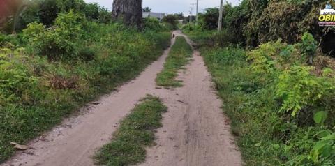 Ruas no bairro Cidade Nova em Curuá estão tomadas pelo mato | Portal Obidense