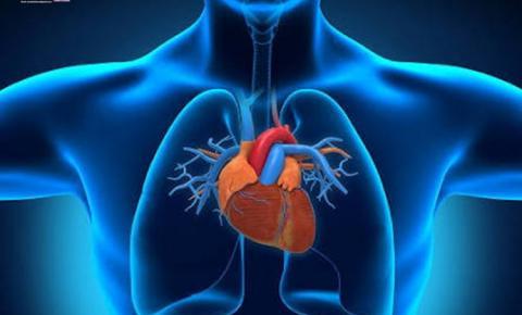 Como se prevenir de doenças cardiovasculares, neste artigo algumas dicas para começar a ação e prevenção