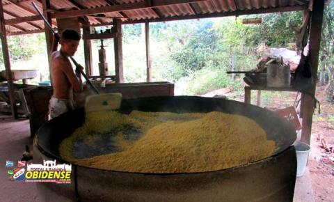 Um produto tipicamente Obidense, que fomenta e gera recursos para a cidade e comunidade do Cipoal.