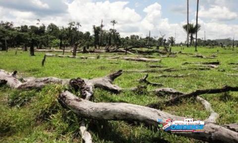 Ameaçados em conflitos agrários ficam sem proteção no oeste do Pará