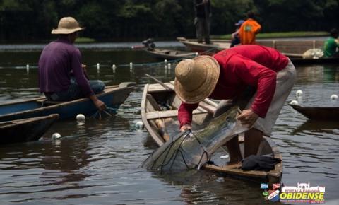 Pescadores da Amazônia já falam em impactos das alterações climáticas