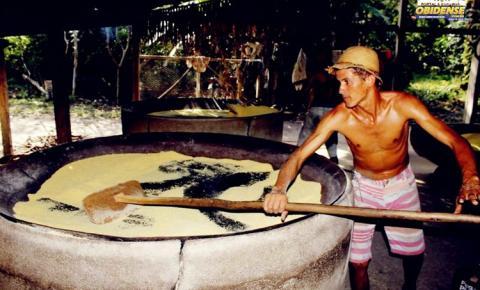 O Portal Obidense, foi até a comunidade Nova Jerusalém no município de Óbidos – PA, acompanhar o processo de preparo da farinha de mandioca.