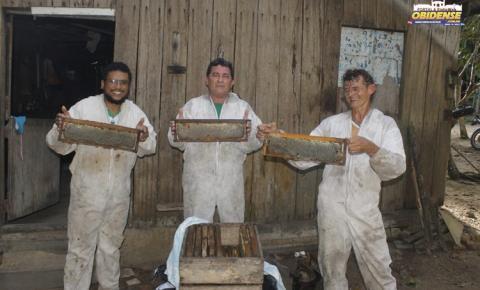Em Óbidos SEMAB incentiva apicultores e a produção de mel passa a ser uma realidade