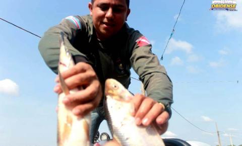 SEMMA prende pescado protegido pelo defeso e doa a comunidade carente em Óbidos