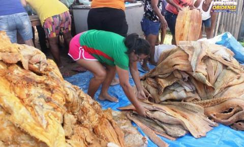 População Obidense se beneficia com peixe apreendido pela SEMMA. O pescado foi distribuído nos bairros da cidade