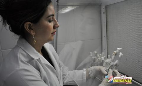 Bactérias do Bem - Pesquisa investiga produção de bioativos por actinobactérias da Amazônia