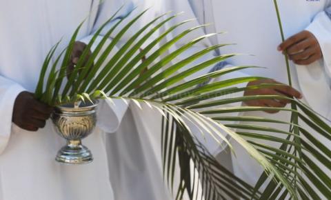 O Domingo de Ramos nos ensina que seguir Cristo é renunciarmos a nós mesmos
