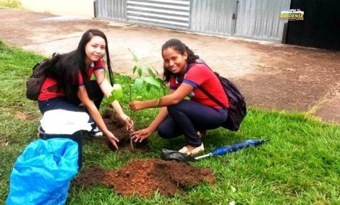 Grupo de amigos, escolas e SEMAB realizam projeto de revitalização e arborização da praça de santa Terezinha