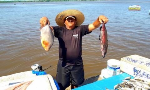 Várias espécie de peixes é vendida em frente à cidade de Óbidos I Portal Obidense