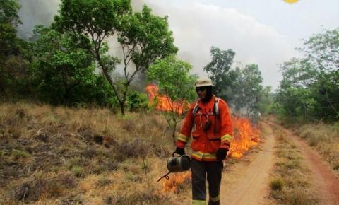 Corpo de Bombeiros intensifica alerta sobre queimadas durante o verão amazônico I Portal Obidense