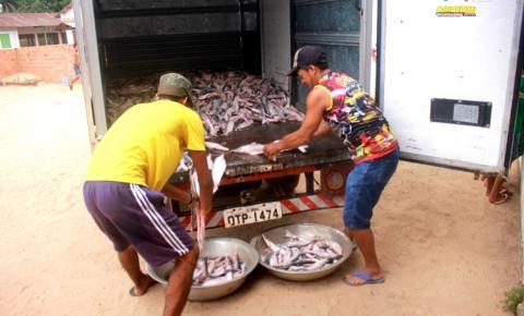 Pescado apreendido é doado para comunidades no município de Óbidos | Portal Obidense