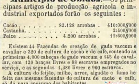 Quadro da exportação dos principais artigos de produção agrícola do município de Óbidos – 1861