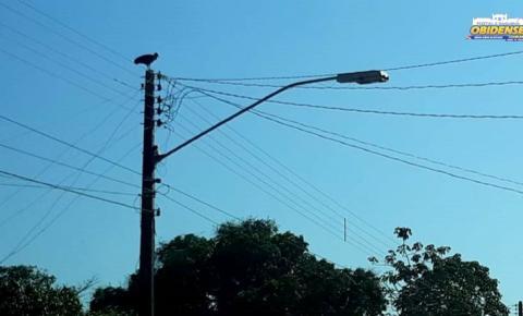 Requerimento pede eletrificação para comunidades de Óbidos | Portal Obidense