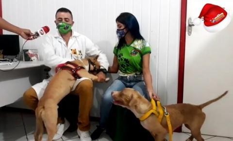Conheça as Ações do Pet Shop Mundo dos Bichos em Óbidos | Portal Obidense