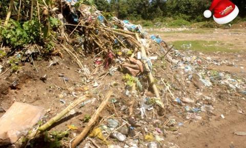 Pesquisa aponta que 95% das cidades do Pará ainda enviam resíduos a lixões   Portal Obidense