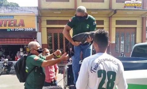 Filhote de peixe-boi é resgatado em Oriximiná-Pará | Portal Obidense