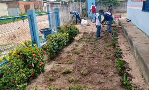 Projeto jardinagem nas escolas pela SEMAB | Portal Obidense