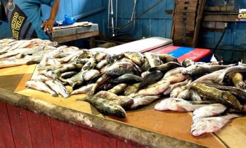 Mercado do Peixe - Aumenta a procura de pescado na Semana Santa | Portal Obidense