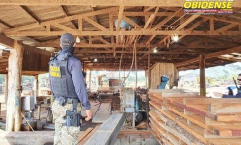 Polícia Federal deflagra a Operação Isnashi, em Manicoré no Amazonas| Portal Obidense