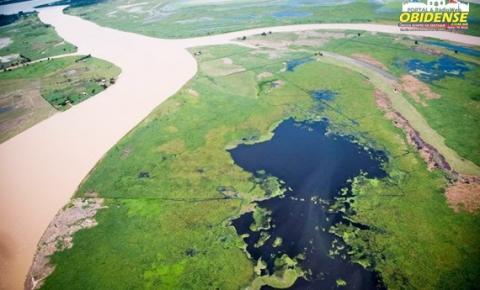 Projeto contará com doação de 12,5 milhões de euros de Banco Alemão KFW para combate ao desmatamento no Estado do Pará | Portal Obidense