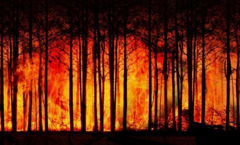 Novo relatório do IPCC coloca fogo no debate sobre mudanças climáticas