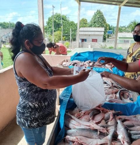 Através de secretarias e entidades, prefeitura distribui peixe em Óbidos | Portal Obidense