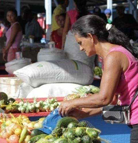 Óbidos está entre as prefeituras do Pará que precisam confirmar dados de trabalhadores para recebimento de auxílio de R$ 400